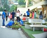 Sắc xanh tình nguyện ngập tràn mái trường Văn hóa